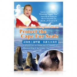 Video-1053 Supreme Master Ching Hai's Plea to Protect the Cape Fur Seals